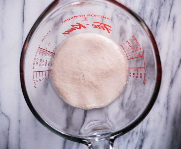 testing yeast to see if it is active