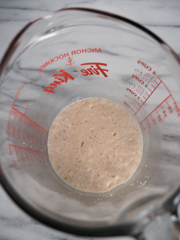 Yeast, sugar and milk mixture inside glass measuring cup proofed